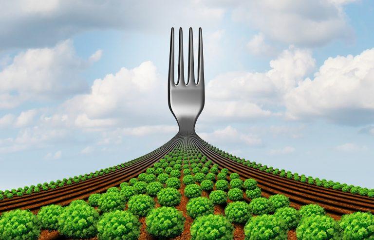 Dalle imprese maltesi ok a una politica alimentare UE ecosostenibile