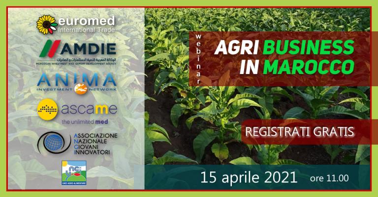 Agribusiness in Marocco: il webinar gratuito