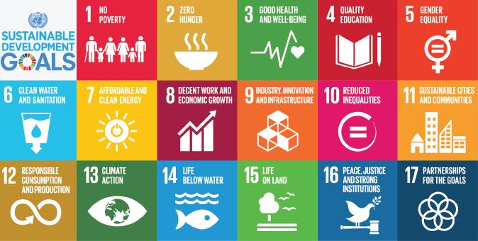 L'Agenda 2030 per lo sviluppo sostenibile: la road map